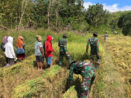 Satgas Pamtas Sektor Timur Dukung Ketahanan Pangan Wilayah Perbatasan