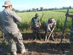 Jalan penghubung antar Dusun Mulai Diratakan Oleh Satgas TMMD Ke-111 Kodim Loteng